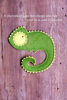 Leon The Chameleon | Flickr - Photo Sharing!