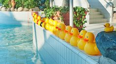 www.sokoshotels.fi en oulu sokos-hotel-eden spa