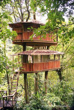 Finca Bellavista | Costa Rica | Sustainable Treehouse Community