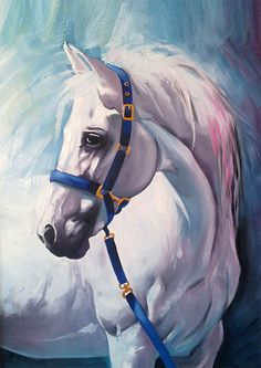 White horse - oil painting - print 8 x 12 $25.00