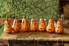 Enchanted Gourds by Pixie Dust Miniatures