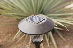 Solar powered garden path lights