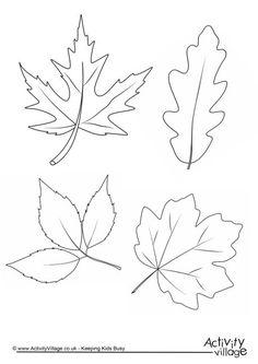 Autumn Leaves Colouring Page Leaf Coloring Page, Fall Coloring Pages, Leaf Template, Flower Template, Owl Templates, Crown Template, Butterfly Template, Applique Templates, Autumn Trees