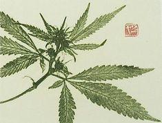 cannabis leaf print
