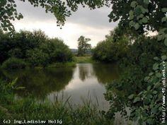 Posláním rezervace je zachování uceleného komplexu mokřadních luk, rozptýlené zeleně a luhů se zbytky mrtvých ramen a periodicky zaplavovaných tůní v nivě řeky Opavy s ochranou mokřadního ekosystému s výskytem vzácných a ohrožených druhů živočichů a rostlin, zejména bahňáků.  OPAVSKÉ SLEZSKO