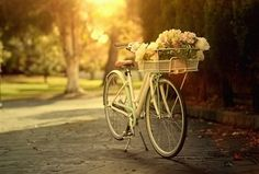 An poster sized print, approx (other products available) - Flowers in bicycle basket - Image supplied by Australian Views - Poster printed in the USA Bicycle Basket, Bicycle Art, Blend Images, Framed Prints, Canvas Prints, Personalized Photo Gifts, Garden Quotes, Good Housekeeping, Favim