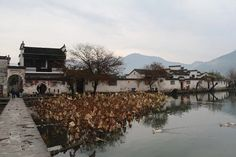 水墨丹青的宏村,宏村旅游攻略 - 蚂蜂窝