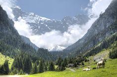 Swiss alp (digital version) by on YouPic Swiss Alps, Canon Eos, Switzerland, Mountains, Digital, Nature, Travel, Nice Asses, Naturaleza