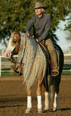 Mr. Lyle Lovett (on his horse Smart and Shiney)