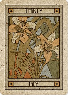 30/39. Lily - Chelsea-Lenormand by Neil Lovell