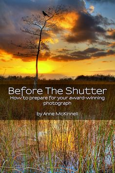 "Free eBook, ""Before The Shutter"" by Anne McKinnell. @ http://annemckinnell.com/before-the-shutter/#"