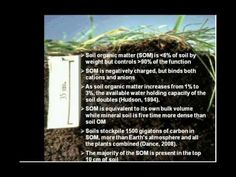 """Role of Soil Biology in Improving Soil Quality. 1) rhizosphere biology, the area immediately surrounding the plant root with the highest concentration of microbiological activity; 2) soil """"livestock"""" consisting of bacteria, fungi, nematodes, protozoa and microarthropods and representing the greatest concentration of biomass anywhere on the planet 3) glomalin, a biological glue that holds soil together and improves soil aggregation; and 4) building soil biota to improve soil quality"""