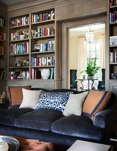 Bookcases, light and velvet sofa with ikat