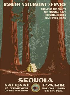 PERFECT print. I'm in love. Sequoia National Park Poster $35