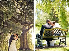 Wedgewood Foxtail Sonoma Wedding Venues Sonoma County Banquet Hall