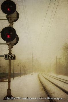 Trevillion Images - train-tracks-in-snow