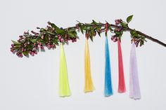 Technicolor tassel branch