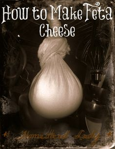 How to Make Feta Cheese l Homestead Lady  #homemadecheese.  This looks like the easiest tutorial.