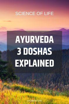 Why ayurveda is called 'the sister science of yoga' Ayurvedic Healing, Ayurvedic Diet, Ayurvedic Recipes, Ayurvedic Medicine, Ayurveda Dosha, Pitta Dosha, Reiki, Ayurveda Lifestyle, Healthy Body Weight