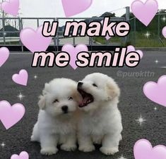 Cute Love Memes, Cute Quotes, Cat Memes, Funny Memes, Crush Memes, Valentines For Kids, Valentine Nails, Valentine Ideas, Relationship Memes
