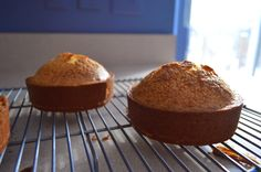 lemon butter love: 1/2 pound cake in mini springform pans  http://www.lemonbutterlove.com/2015/02/12-pound-cake.html