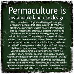 Permaculture garden design