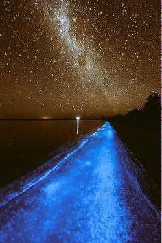 まるでCG…!湘南の海が「天の川」になる日がある - NAVER まとめ