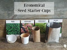 5 Easy DIY Seed Starter Cup Ideas