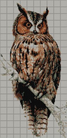 Thrilling Designing Your Own Cross Stitch Embroidery Patterns Ideas. Exhilarating Designing Your Own Cross Stitch Embroidery Patterns Ideas. Cross Stitch Owl, Cross Stitch Animals, Cross Stitch Charts, Cross Stitch Designs, Cross Stitching, Cross Stitch Embroidery, Embroidery Patterns, Cross Stitch Patterns, Funny Embroidery