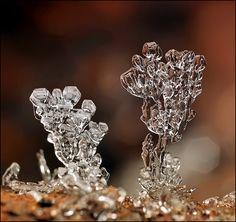 Remarkable Macro Photographs of Ice Structures and Snowflakes by Andrew Osokin  Кубки запрета... - Андрей Осокин - LensArt.ru