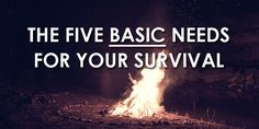 The Give Basic Needs For Your Survival