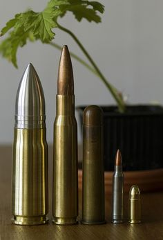 From left to right, .950JDJ, .50BMG, .600 nitro, 5,56x45 mm and 9mm para. Have a nice day