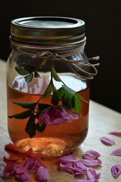 Clean Living; DIY Rose Water