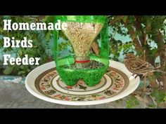 How To Make A Bird Feeder   DIY Homemade Plastic Bottle Bird Feeder - YouTube