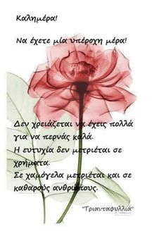Good Morning, Floral Arrangements, Wish, Life Quotes, Mornings, Greek, Gifts, Decor, Buen Dia