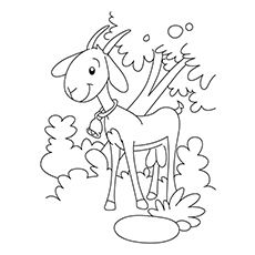 Goat Under The Tree Coloring Pages