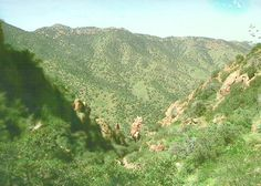 mountains of Bisbee