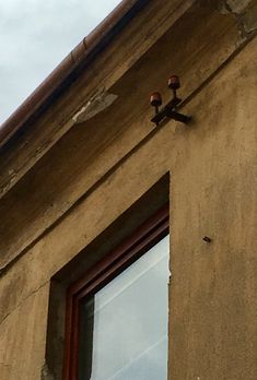Windows, Window, Ramen