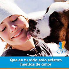 Es un día para celebrar por aquellos hogares libres de violencia hacia la mujer. ¡Qué mejor celebración que hacerlo con estos compañeros fieles que no dejan más que huellas de amor! #CVP #NoViolencia #Mujer www.clinicaveterinariapoblado.com  #ServiciosCVP  #Mascotas #CVP #PetLovers #Pets #Perros #Gatos #Dogs #Cats #Mascotagram #Petstagram #PetShop #DogLovers #CatLovers #NoAlMaltratoAnimal #LovePets #Instapet #ILoveMyPet #DogLife #Veterinaria