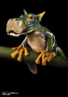 Freak Frog - Worth1000 Contests