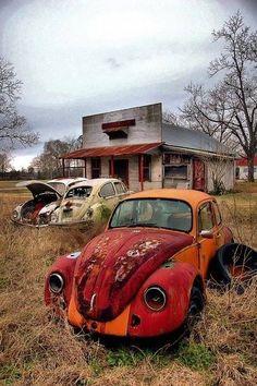 Beetles Abandoned Buildings, Abandoned Houses, Abandoned Places, Abandoned Vehicles, Van Vw, Kdf Wagen, Vw Vintage, Rusty Cars, Vw Cars