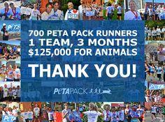 Congratulations PETA Pack 2012! http://www.peta.org/run