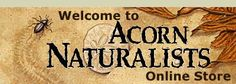 Acorn Naturalists -- Beautiful ideas for gift giving, nature study, science study, etc.
