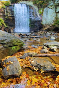 Fall at Looking Glass Falls in Pisgah National Forest near Asheville, North Carolina - photo by www.romanticasheville.com Nc Mountains, Blue Ridge Mountains, Blue Ridge Parkway, Western North Carolina, North Carolina Mountains, North Carolina Homes, National Forest, Asheville Nc, Asheville Hiking