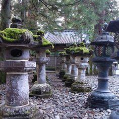 Lost in time   Toshogu complex, Nikko UNESCO World Heritage Site   Japan #unesco #culture #history #temple #landscape #photography #travelphoto #travelgram #nofilter #toshogu #nikko #natgeotravel #natgeo ©samtiltman