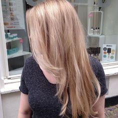 Champagne honey blonde hair by @larissabosch (Haarlem) #salonbnl #olaplex…