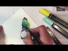 Colouring Butterflies with Blendabilities Video created by Alisa Tilsner www.alisatilsner.com #blendabilities #stampinup #stampinupaustralia