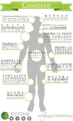 Beneficios de #caminar al menos 30 minutos diarios. #ejercicio #adelgazar #adelgazarconsalud #salud #dieta