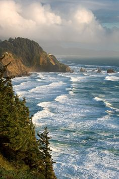"""Cape Meares Oregon - """"Be sure to take the short hike behind the parking lot to see the Octopus Tree. Places To Travel, Places To See, Le Vent Se Leve, Oregon Travel, Travel Portland, Oregon Washington, Oregon Coast, Oregon Usa, Portland Oregon"""