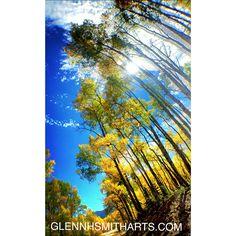 Summer photos by Glenn H Smith